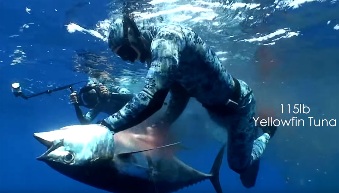Spearfishing 115lbs Dogtooth tuna - mission Africa