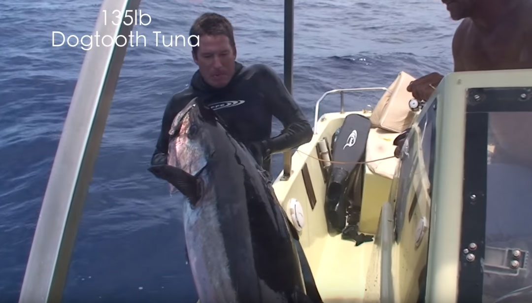 Spearfishing 135lbs Dogtooth tuna - mission Africa