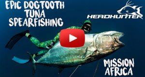 Spearfishing Dogtooth tuna - mission Africa